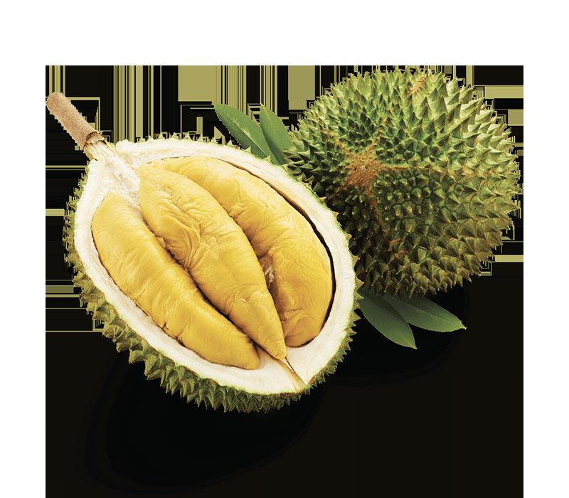 D197 Musang King Durian