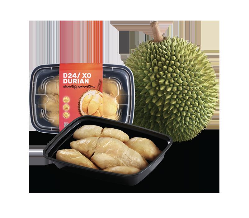 D24 Sultan King Durian